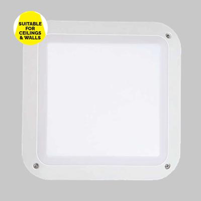 ANNA PLAIN SQ WH product image