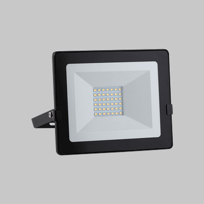 LED FLOOD 30W D/NIGHT 4000K product image