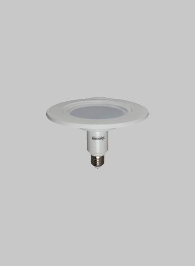 BULB LED 173 10W RETROFIT Globe product image
